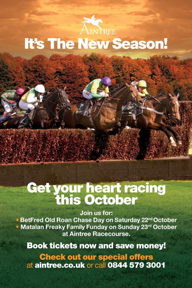 Aintree: Autumn Racedays poster